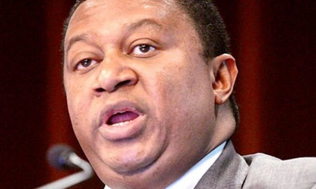 Renewable Energy Unlikely to Overtake Oil in Decades – Barkindo